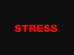 """味覚障害の原因""""ストレス"""""""